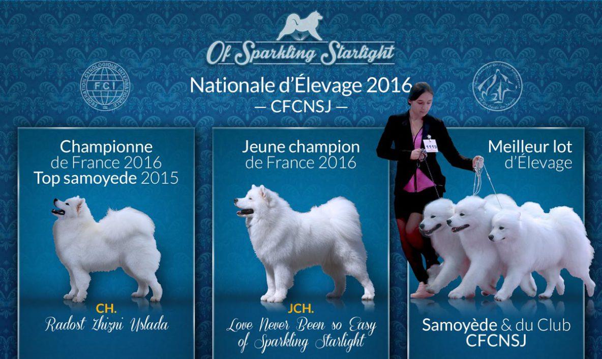 Nationale d'élevage 2016